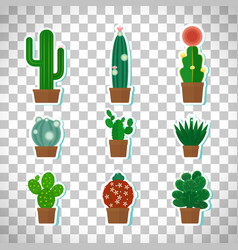 Cactus icons set on transparent background vector