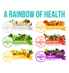 Color diet rainbow fruits and vegetables vector