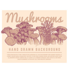 Hand drawn mushrooms background autumn gourmet vector