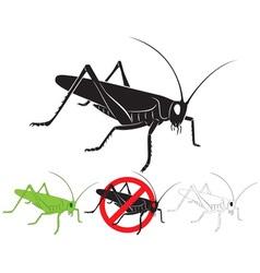Locust vector