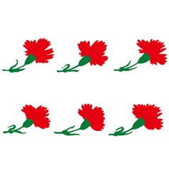 Set of carnations flowers vector