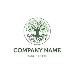 trees logo designs vector image