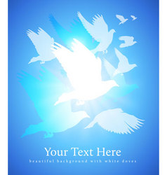 doves flying vector image vector image