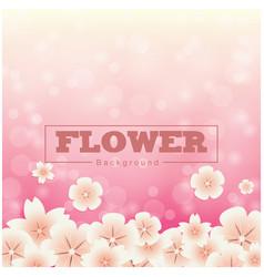 flower sakura pattern pink background image vector image