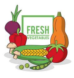 colorful poster with set of fresh vegetables and vector image