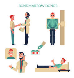 Flat marrow bone donation concept set vector