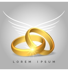 Golden wedding rings with angel wings vector