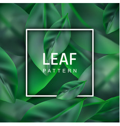 leaf realistic background vector image