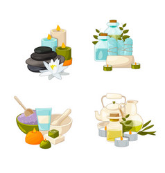 set of cartoon beauty and spa elements vector image