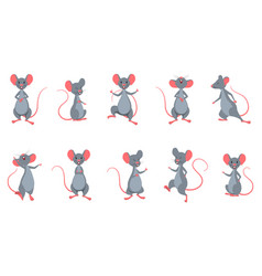set rats mice in different poses funny cheerful vector image