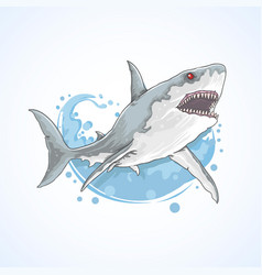 shark fish sea water vector image