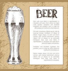 Sketch style pilsner beer glass on vintage tint vector