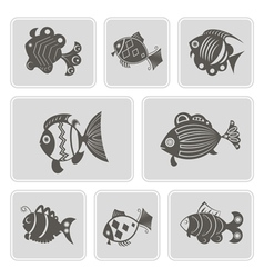 monochrome icons with different fish vector image vector image