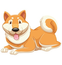 Adorable orange dog vector
