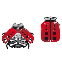 Cartoon racing ladybugs and beetles vector image