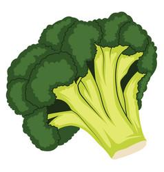 dark green and light green cartoon of broccoli of vector image