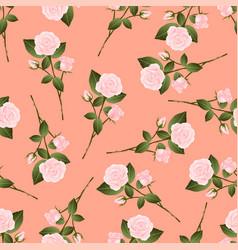 Pink rose bouquet on orange peach background vector