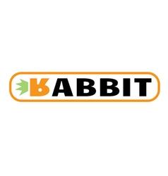 Rabbit Design vector
