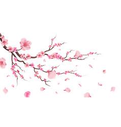 sakura blossom branch falling petals flowers vector image