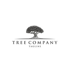 vintage oak trees logo designs vector image