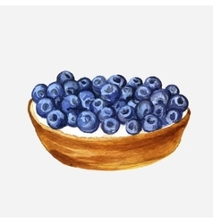 watercolor cake with blueberries vector image