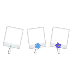 Blank Photos with Forget Me not Flowers vector image