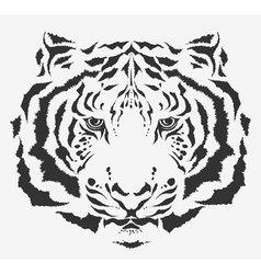 tiger tiger vector image