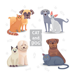 cute cat and dog cartoon home pet vector image vector image