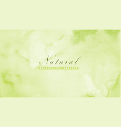 Abstract natural background designed with green vector