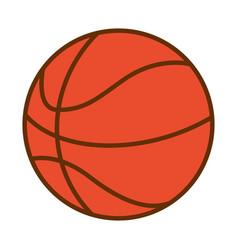 basketball ball sport vector image
