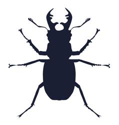 detailed silhouette deer beetle vector image