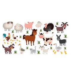 farm animals stock raising concept cartoon sheep vector image