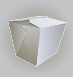 Noodle box vector