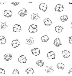 Seamless pattern with cotton flowers cotton ball vector