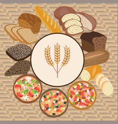 Set of wheat cartoon food bread rye bread vector