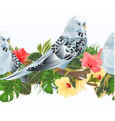 Tropical border seamless background birds vector