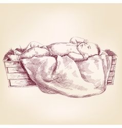 Baby Jesus in the manger hand drawn llustration vector image vector image