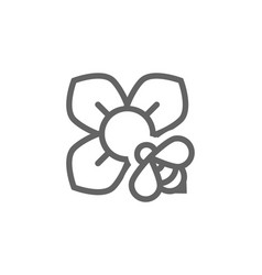 flower and bee line icon combination vector image vector image