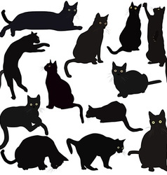 Black cats silhouettes vector image
