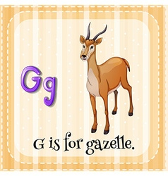 Flashcard letter g is for gazelle vector