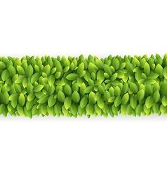 Fresh green leaves line vector image