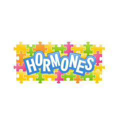 human hormones collected from puzzles vector image