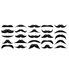 mustache collection vintage moustache isolated on vector image