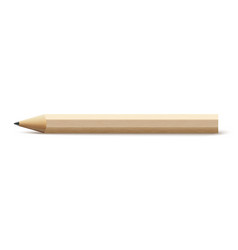 pencil school isolated wood vector image