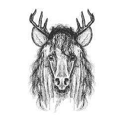 Psychedelic hand-drawn sketch of Horse face with vector