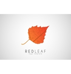 Red leaf symbol logo Creative logo design Autumn vector image