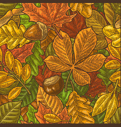seamless pattern leafs acorn chestnut and seed vector image