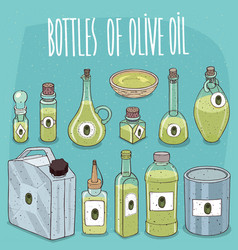 set of containers with olive oil vector image