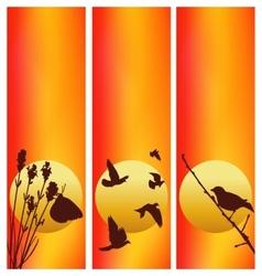 Three sunset vector