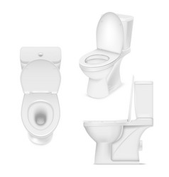 toilet white bowl set clean washroom seat vector image